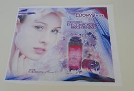 Vlajková tkanina banner vytištěná 1,6 m eko solventní tiskárnou WER-ES160 4