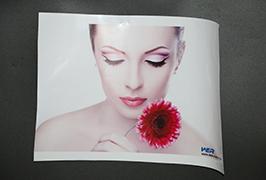 Samolepicí vinyl potištěný 3,2 m (10 stop) eco solventní tiskárnou WER-ES3202 4